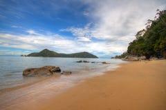 Kiwi Paradise Stock Image
