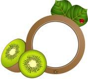 Kiwi Photo Frame Images stock