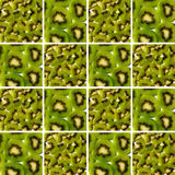 Kiwi pieces and slices inside square shapes Stock Images