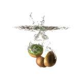 Kiwi pluśnięcie na wodzie, odosobnionej Zdjęcie Royalty Free