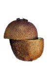 Kiwi przeciw białemu tłu Zdjęcie Royalty Free