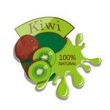 Kiwi realistico Fotografia Stock Libera da Diritti
