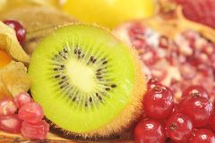 Kiwi and red currant Royalty Free Stock Photography
