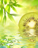 Kiwi reflected in water Royalty Free Stock Images