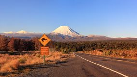 Kiwi road sign mt. Ngauruhoe winter sunset, Tongariro National Park, New Zealand royalty free stock image
