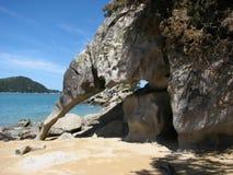 Kiwi-rock. In Abel Tasman, New Zealand royalty free stock photography