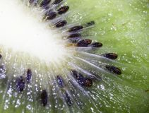 Kiwi, seed, design, fruit, streaks, shine, texture, glare, flesh. Kiwi, seed, design, fruit, streaks, shine, texture, shadow, glare, flesh, brown background Stock Photo