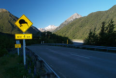 Kiwi sign. Arthurs pass, New Zealand royalty free stock photo