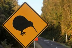 Kiwi sign. Yellow road sign with black border and profile of kiwi bird in new zealand Royalty Free Stock Photography