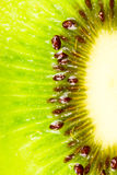 Kiwi slice Stock Photography