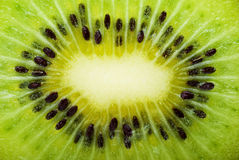 Kiwi slice closeup Stock Images