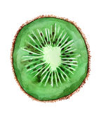 Kiwi. The slice of kiwi cut across Stock Photo