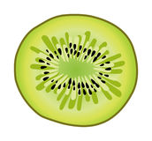 Kiwi slice vector Stock Photography