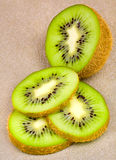 Kiwi slices. Stock Image