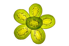 Kiwi slices. Lying in a shape of the flower Royalty Free Stock Photo