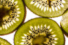 Kiwi Slices retroiluminado Imágenes de archivo libres de regalías