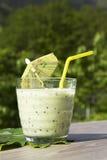 Kiwi smoothie Royalty Free Stock Photos