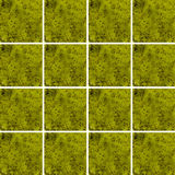 Kiwi smoothie texture inside square shapes arranged as background Royalty Free Stock Photo