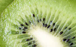 Kiwi som en bakgrund Royaltyfri Bild