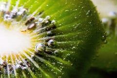 kiwi som sparkling Arkivbild