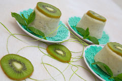 Kiwi sorbet. Homemade kiwi sorbet on the white plate Stock Image