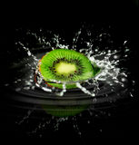 Kiwi Splash Stock Photography