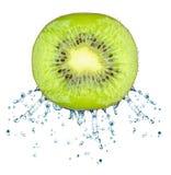 Kiwi Splash Royaltyfri Foto