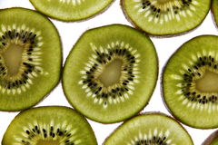 Kiwi - Stock Image Stock Photography