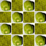 Kiwi textures inside square shapes Stock Photos
