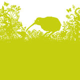 Kiwi in the thicket Stock Image