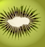 Kiwi vector background Royalty Free Stock Image