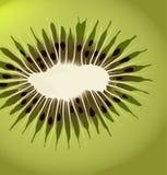 Kiwi vector background stock illustration