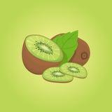 Kiwi  vector illustration. Eps10 Royalty Free Stock Image