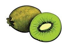 Kiwi verde y una mitad del kiwi Imagenes de archivo