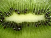 Kiwi view Royalty Free Stock Photography