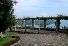 Kiwi Vines och kullerstenstenar Royaltyfria Bilder