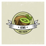 Kiwi Vintage, hand drawn fresh fruits background, summer plants, vegetarian and organic citrus and other, engraved. Stock Image