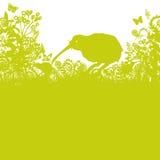 Kiwi w gąszczu royalty ilustracja