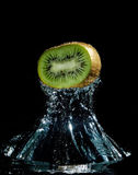 Kiwi in water Stock Images