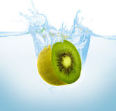 Kiwi in the water Royalty Free Stock Photography