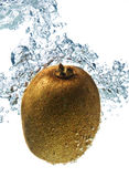 Kiwi in water Royalty Free Stock Photos