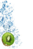 Kiwi in water Royalty Free Stock Photo