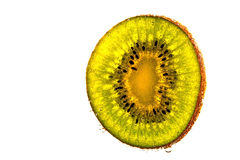 Kiwi, water drops, closeup. Kiwi water drops closeup fruit isolated Stock Images