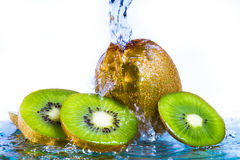 Kiwi with water splash Stock Photography