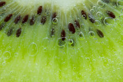 Kiwi water splash Royalty Free Stock Image