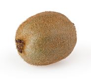 Kiwi  on white Stock Image
