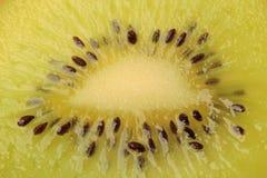 Kiwi on white. Slice kiwi and seed background Royalty Free Stock Photos