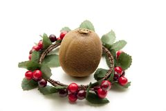 Kiwi in the wreath Royalty Free Stock Images