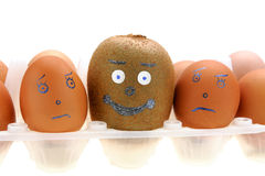 Kiwi y sistema de huevos Fotografía de archivo
