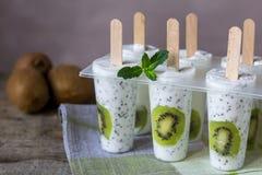 Kiwi yogurt ice cream popsicles. Healthy dessert. Homemade product. Summer background royalty free stock image